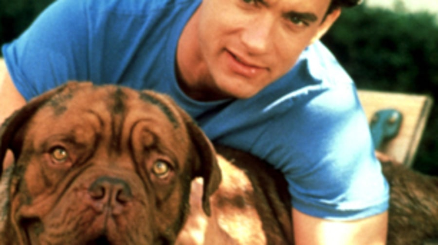 'Turner and Hooch' (1989)