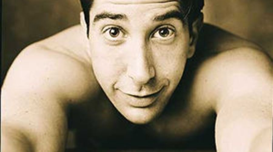 More David Schwimmer