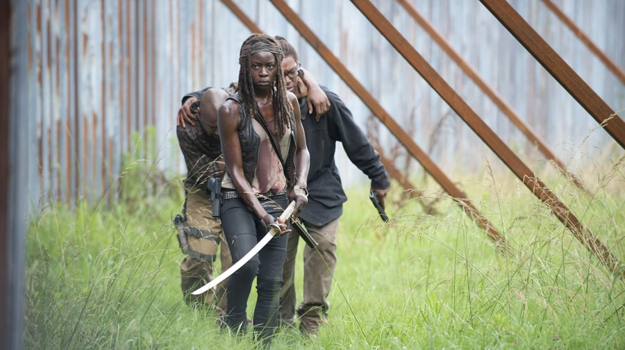 'The Walking Dead' Season 6.5 (February 14th)