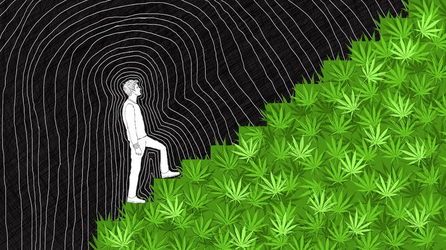 Why the Addiction Recovery Community Should Accept Medical Marijuana