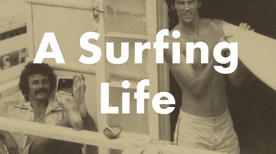 For the Guy Who Wants to Ride the Waves: Barbarian Days: A Surfing Life by William Finnegan