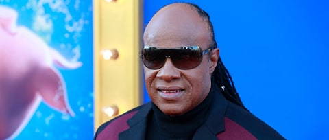 Stevie Wonder: Politicians Must End 'Hatred, Bigotry of Any Kind'