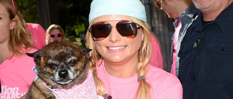 Miranda Lambert Launches New Pet Product Campaign, Readies Clothing Line