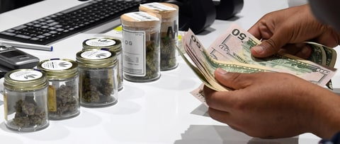 Can Legal Pot Make You Rich?