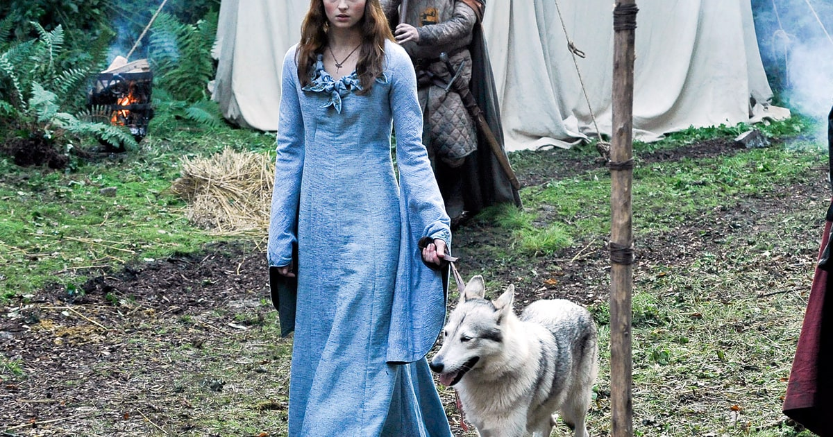 Game Of Thrones Sansa Adopts Dire Wolf Lady In Real Life