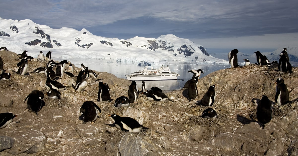 Take an adventure cruise to antarctica the 7 best places for Best way to travel to antarctica