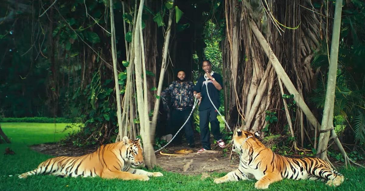 See DJ Khaled's 'On Everything' With Rick Ross, Big Sean, Travis Scott