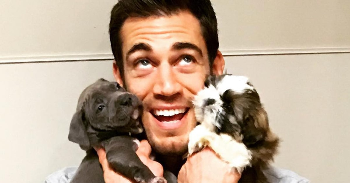 Hot veterinarian dr evan antin is the newest internet sensation