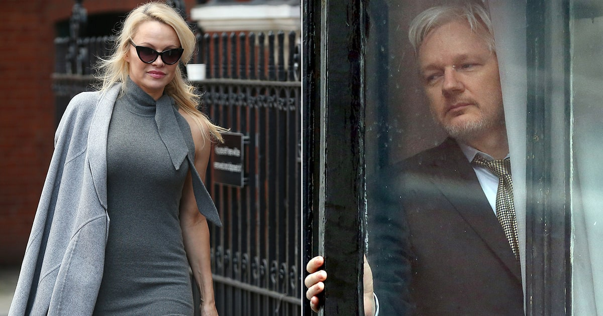 Image result for pamela anderson assange