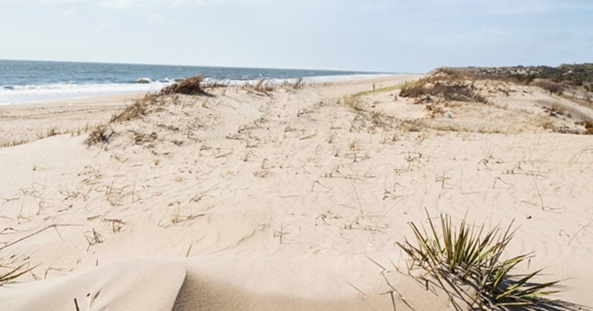 Delaware The Hidden Beach In Between 50 Great American