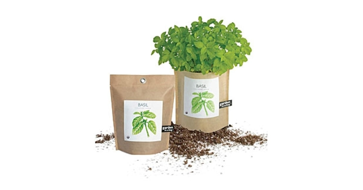Organic Garden in a Bag Basil Everything You Need to Make Your