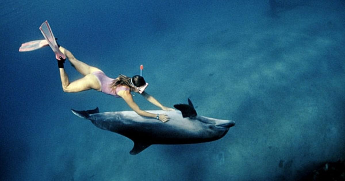 Eilat israel the best snorkeling spots in the world for Public fishing spots near me