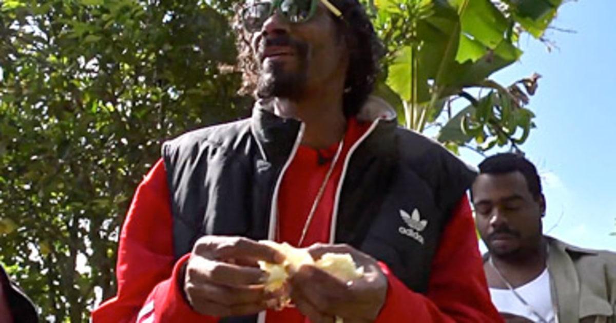 'Reincarnated' Traces Snoop Lion's Rastafarian Awakening - Rolling Stone. '