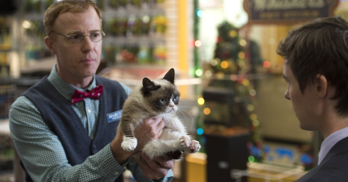 10 things we learned from grumpy cats worst christmas ever 10 things we learned from grumpy cats worst christmas ever rolling stone thecheapjerseys Gallery