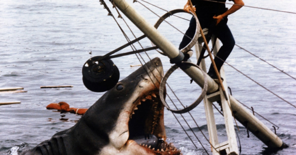 jaws heading back to theaters for th anniversary rolling stone  jaws heading back to theaters for 40th anniversary rolling stone
