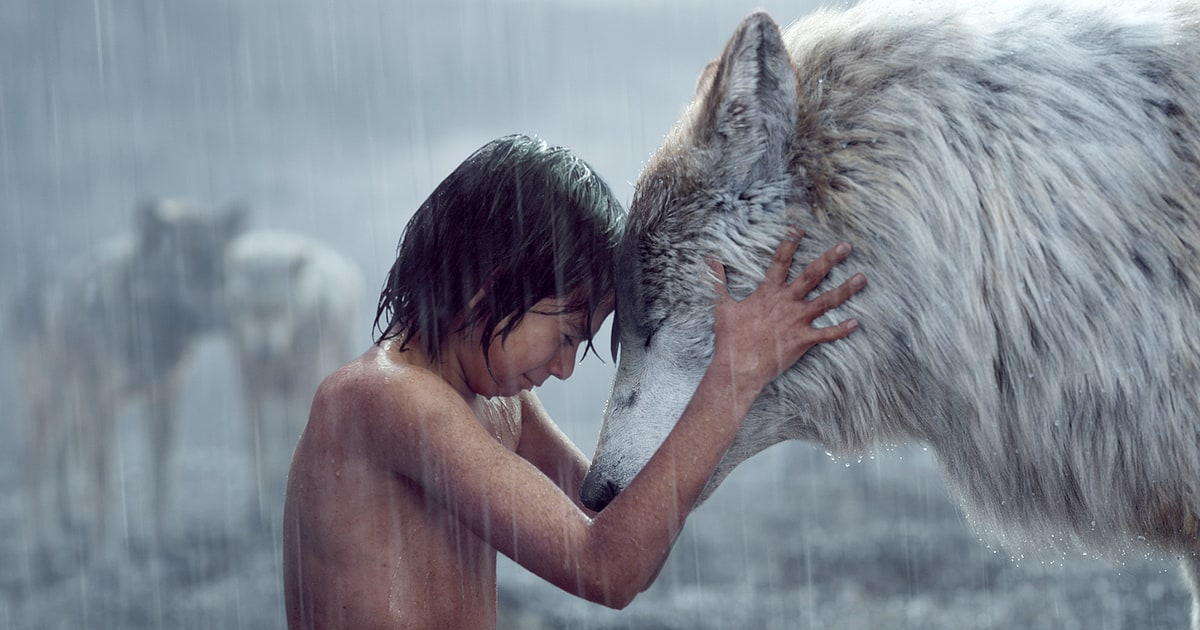 Image result for the jungle book Mowgli Wolf