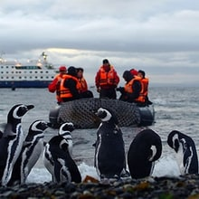 The World's Best Adventure Cruises