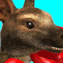 What Does PETA Think of the 'Tekken 7' Kangaroo Caper?