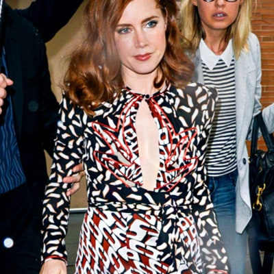 Write a Fashion Police Caption for Amy Adams