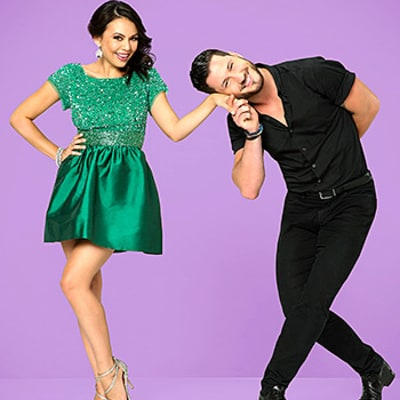 Dancing With the Stars Season 19 Cast: See the Celebs and Their Partners!
