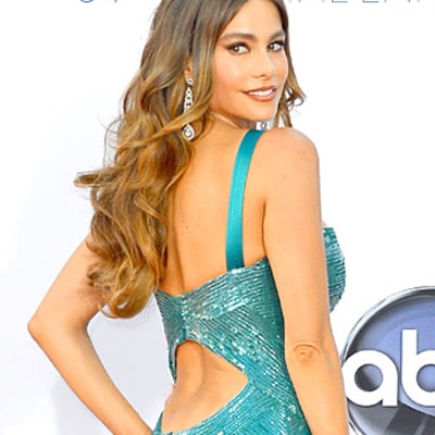 Sofia Vergara's Stunning Red Carpet Looks