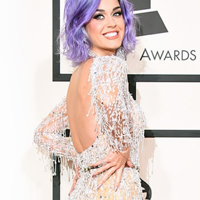 Grammys 2015 Red Carpet Fashion: Best Dressed Stars