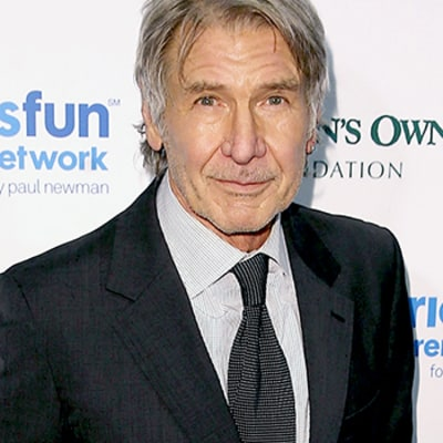 Engine Failure to Blame for Harrison Ford's Plane Crash, Per NTSB Preliminary Report