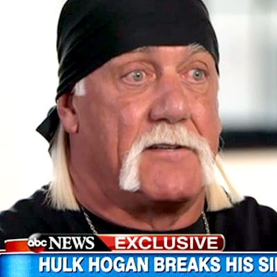 Hulk Hogan Begs for Forgiveness After N-Word Scandal: