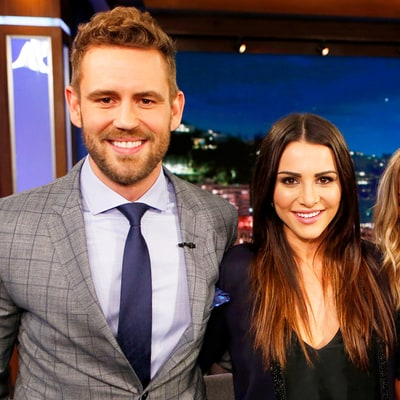 Bachelor Nick Viall Apologizes to Andi Dorfman Two Years After Sex Revelation: A Play-by-Play of Every Awkward Detail