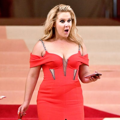 Amy Schumer Is the Most Dangerous Celebrity on the Internet: See the 2016 List!