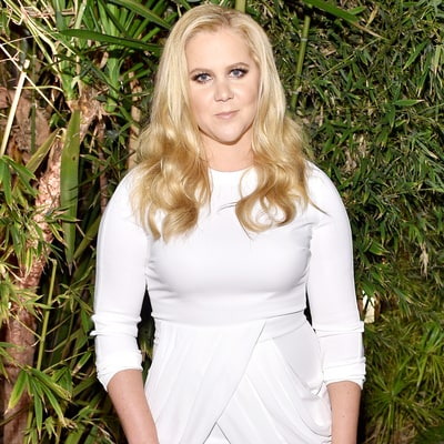 Amy Schumer Is Reportedly in Talks to Star in Live-Action Barbie Movie: Details!