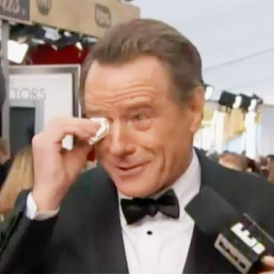 Bryan Cranston Cried Over His 1989 'Baywatch' Cameo at the SAG Awards 2016