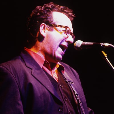 How Elvis Costello Outlined His Future with 'Almost Blue'