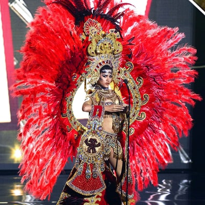 21 Wacky Outfits From the Miss Universe 2015 Pageant