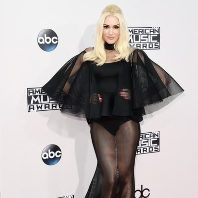 Gwen Stefani Wins the AMAs 2015 Red Carpet in Sheer Gown