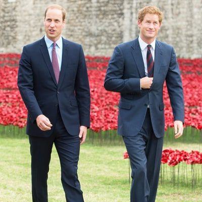 Prince William and Prince Harry's Most Heart-Wrenching Quotes About the Late Princess Diana