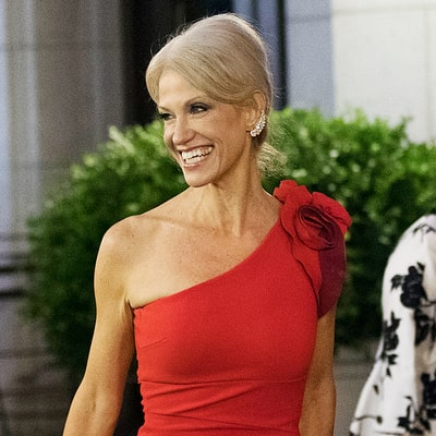 Kellyanne Conway Allegedly Punched Someone at Inaugural Ball