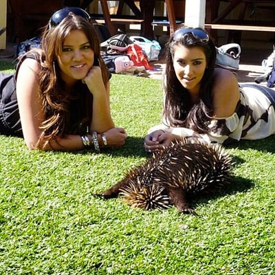 Khloe Kardashian Shares Throwback Photos of Herself and Kim With Koalas, Kangaroos on 2008 Australia Trip