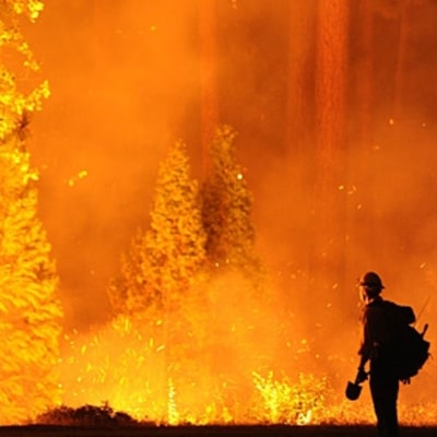 A Training Plan Fit for a Forest Firefighter