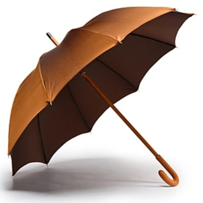 An Enduringly Elegant Umbrella