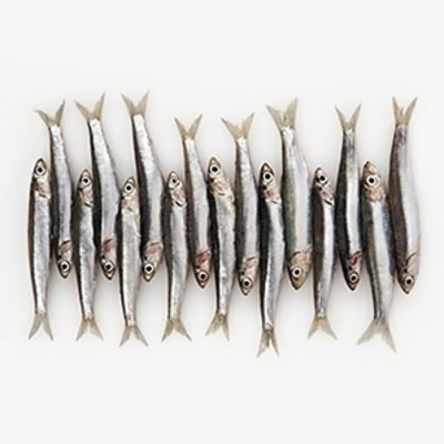 Cooking with Anchovies, the World's Healthiest, Most Versatile Fish