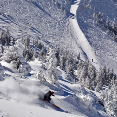Snowbowl, AZ: Where to Ski Now