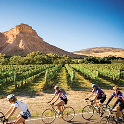 Colorado Wine Country, by Bike