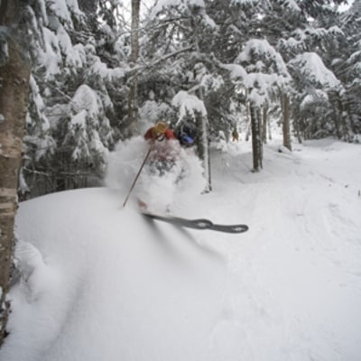 Cannon Mountain, NH: Where to Ski Now
