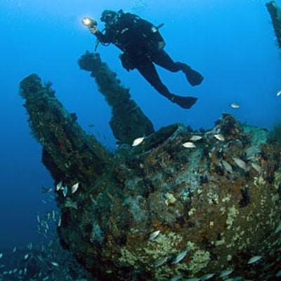 Dive Shipwrecks in the Outer Banks: Epic Adventures