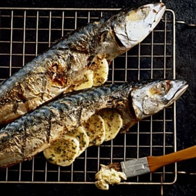 Michael Cimarusti: How to Buy, Cook, and Eat Fish