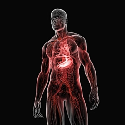 Fighting Inflammation, the Body's Hidden Killer