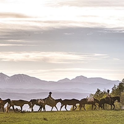 Following an Unbridled, 3,000-Mile Wild Mustang Drive: Photo Essay
