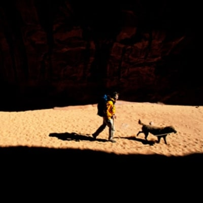 The Dog-Hike How-To