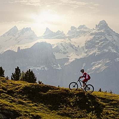 Explore the World's Most Bike-Friendly Country
